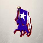 Lone Star Peruvian Horse Club